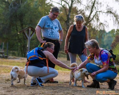 2018-08-22 Honden Reunie 002