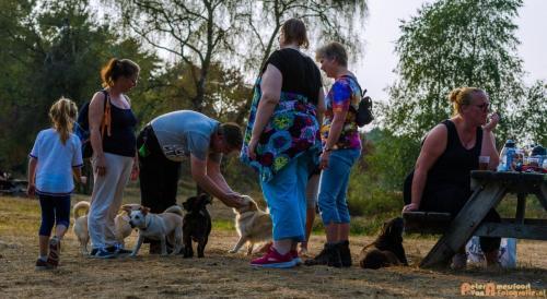 2018-08-22 Honden Reunie 003