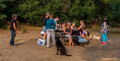 2018-08-22 Honden Reunie 022