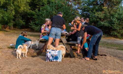 2018-08-22 Honden Reunie 022a