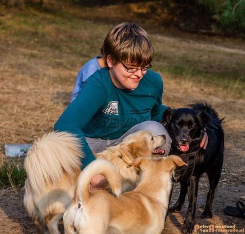 2018-08-22 Honden Reunie 024