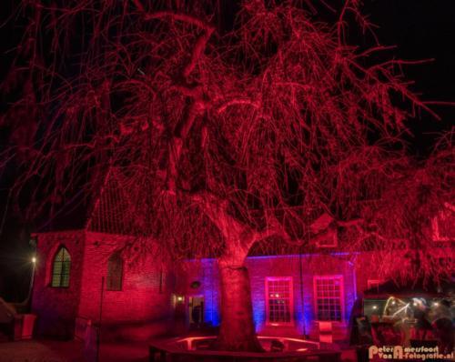 2019-03-07 LichtFestival Kasteel Doornenburgi 043